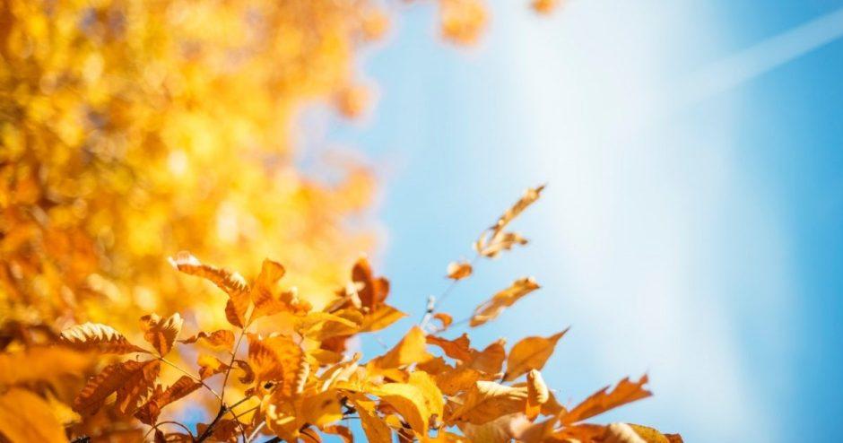 Orai: plūstels 17 laipsnių šiluma, bet rudeniu mėgautis seksis sunkiai