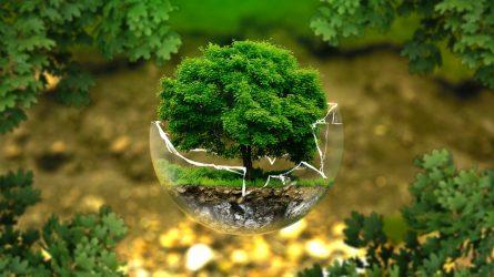 Aplinką tausojančių technologinių ekoinovacijų projektams – daugiau nei 20 mln. eurų ES investicijų