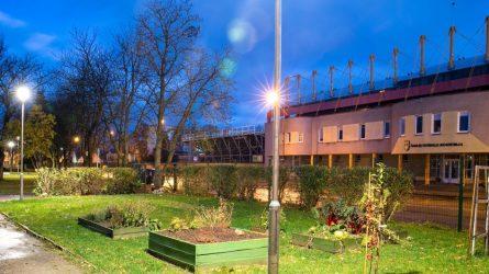Šiaulių darželių kiemai virsta šviesos ir jaukumo oazėmis