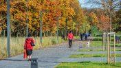 Kultūros ir poilsio parko modernizavimo projektas – geriausiųjų gretose