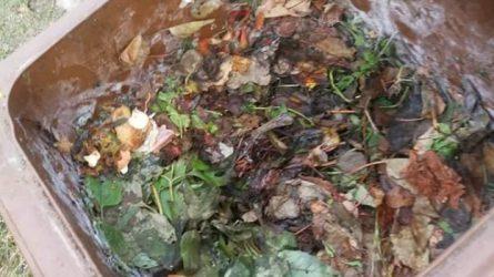 Šalčio pamokos: žiemą maisto atliekas į konteinerius reikia mesti su maišeliais