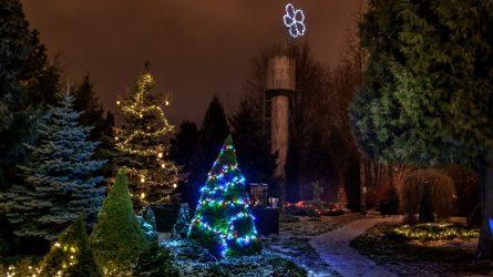 Gera žinia šiauliečiams: ŠU botanikos sodas tęs veiklą