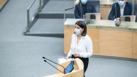Seime priimtas 2021 metų biudžetas