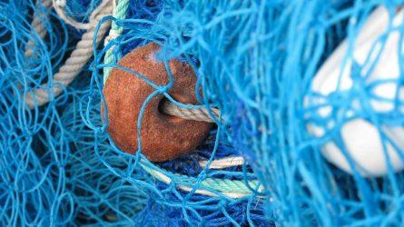 Dėl neteisėtos žvejybos kaltu pripažintas pareigūnas turės atlikti bausmę