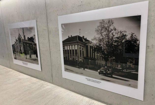 Fotografo Edvardo Tamošiūno ir skulptoriaus Alvido Paškausko paroda