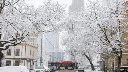 Viešojo transporto pokyčiai Vilniuje – kursuos dažniau