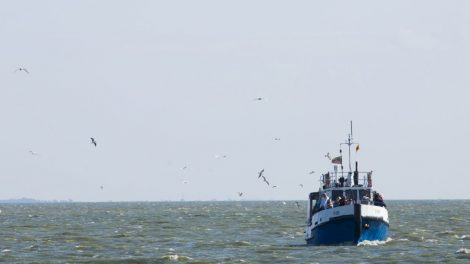Ministras: verslinė žvejyba neapsimoka – teks saugoti žuvies išteklius