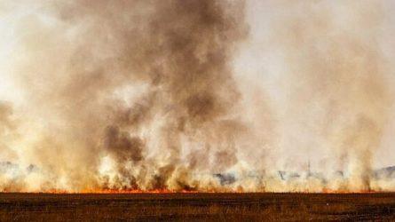Atšilus orams – pernykštės žolės gaisrai