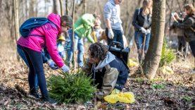 Apsodinkime Vilnių: kurti žaliąsias erdves gali kiekvienas