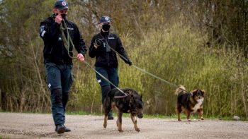 Kauno apskrities policijoje – jau penkti metai graži balandžio 24-osios tradicija