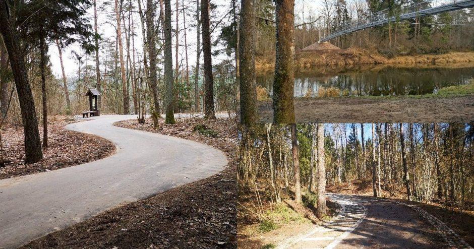 Nuo medžių lajų tako veda naujas dviračių takas