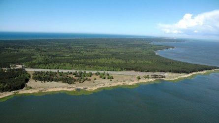 Kuršių Nerijos nacionalinio parko tvarkymo plano derinimas