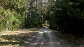 Mišką saugos apsaugos sutartimis: viena pirmųjų tokių – Karšuva