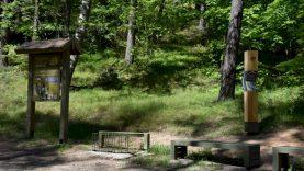 Šiliniškių kraštovaizdžio draustinis naujai pritaikytas lankymui