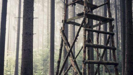 Medžioklės konsultacinėje taryboje – daugiau visuomenės atstovų