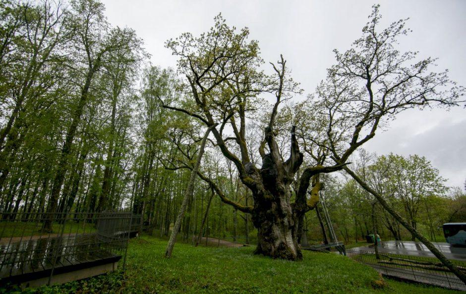 Pasididžiavimo verti gamtos paveldo objektai Lietuvoje
