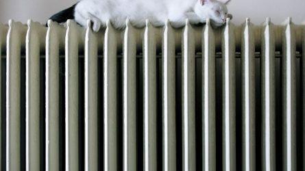 Energetikos ministerija pateikė siūlymus dėl artėjančio šildymo sezono kainų