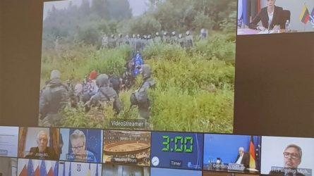 A. Bilotaitė: pastatyti fizinį barjerą Lietuvos-Baltarusijos pasienyje – visos ES interesas