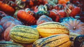 3 patarimai, norintiems kiek įmanoma labiau maitintis sezoninėmis gėrybėmis