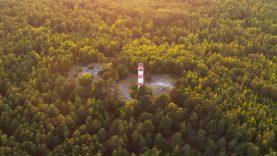 Miškų susitarimo eiga: kaip keliolika vizijų paversti vienu nacionaliniu puslapiu?