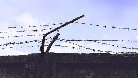 Išaiškinti žiauraus apiplėšimo Lazdijuose vykdytojai ir organizatorius